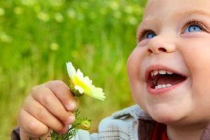 אביב, תינוק, פרח, פריחה